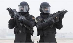 Grupos Operativos Especiales de Seguridad